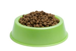 A kutyatáp értékes  tápanyagokat tartalmaz