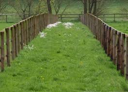 Jól jön néha a kerítés